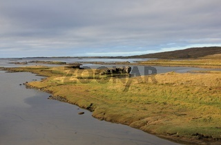 Rocky west coast of Iceland. Breidafjoerdur. Late summer day.