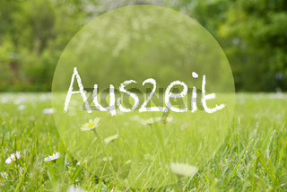 Gras Meadow, Daisy Flowers, Auszeit Means Downtime