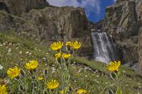Waterfall in the Gran Paradiso area