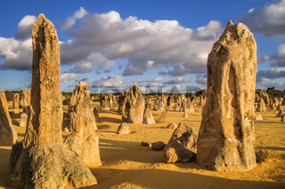 Bizarre rock formations The Pinnacles in late afternoon light, Nambung National Park, Western Austra