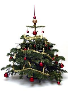 Christbaum / christmas tree