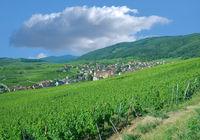 Village of Riquewihr in Grand Est region(former Alsace) ,France