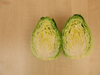 Cut open head of cone cabbage