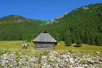 Hirten wood hut on the Chocholowska Glade, Polish Tatra Mountains, Poland