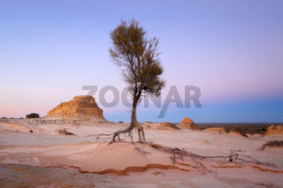 Searching for water arid landscape