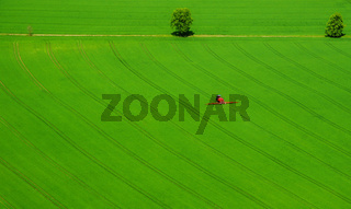 Roter Traktor auf grünem Feld