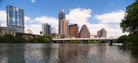 Canine Dog Swims Colorado River Austin Texas