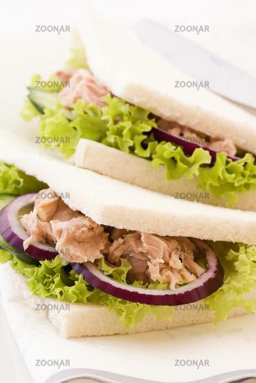 Italian sandwich with tuna and salad as closeup on a plate