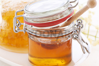 Honey Glass with Honeycomb and honey dripper as closeup on white background