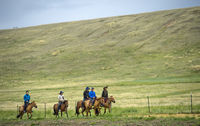 Tourists taking a horse ride in the Mongolian steppe, Gorkhi-Terelj National Park, Mongolia