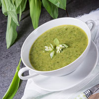 green wild garlic soup