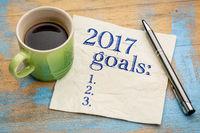 2017 goals list on napkin