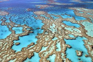 Riffe und Atolle des Great Barrier Reef, Australien