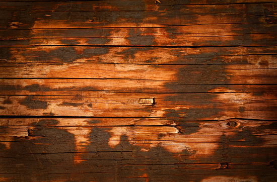 photo wooden paneling old wood grunge background image 1894840