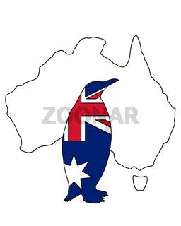 Pinguin Australien