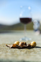 A glass with red wine and dried fruits on a stone table at the red wine hiking trail.