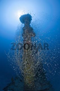 Turm des U-Bootes USS Apogon