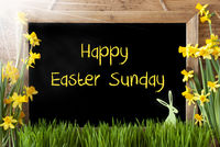Sunny Narcissus, Bunny, Text Happy Easter Sunday