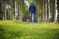Man dog forest trees