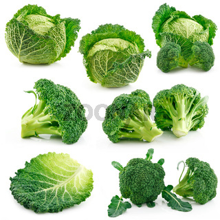 Set of Ripe Broccoli and Savoy Cabbage
