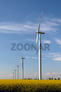 Windkraftanlage im Rapsfeld