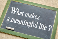 What makes a meaningful life?