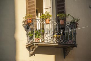 Idyllische Balkon und Sonnenlicht, Massa Marittima, Toskana
