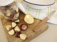 Organic laundry detergent from chestnuts in jar