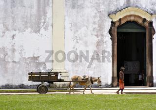 Mann mit Maultierkarre vor der Kirche, Bahia, Brasilien, Südamerika