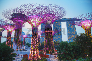 Gardens by the Bay park in Singapore