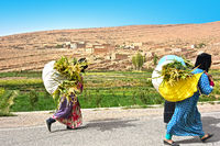 Countryside of Morocco. Village women carrying crops in High Atlas Mountains