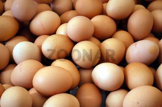 fresh eggs in a basket on the market