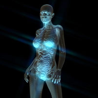 Digital 3D Rendering of the female human Anatomy