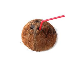 eine Kokosnuss mit Trinkhalm / a coconut with straw