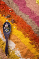 Traditional Indian and Persian spices as close-up
