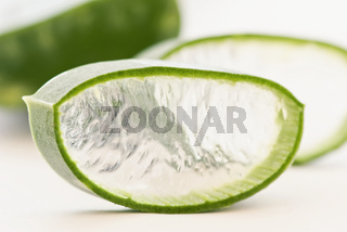 Aloe leaves with cut aloe slice as closeup on white background