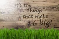 Sunny Wooden Background, Gras, Quote Little Things Make Life Big