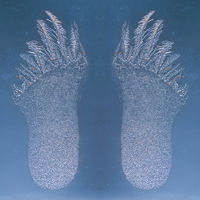 frosty pattern on a window formed like foot prints