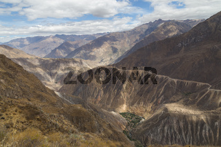 Sangalle Oasis in the Colca Canyon