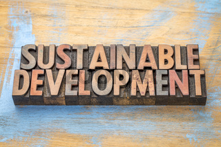 sustainable development - word abstract in wood type