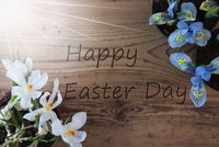 Sunny Crocus And Hyacinth, Text Happy Easter Day
