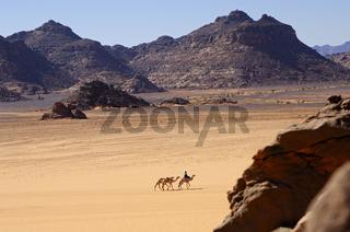 Tuareg Nomaden mit Kamelen in der Sahara