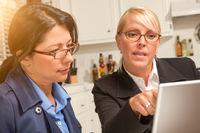 Businesswomen Working on the Laptop