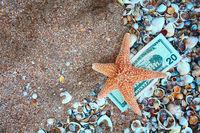 Starfish on twenty dollars over film of seashells and copyspace on sand