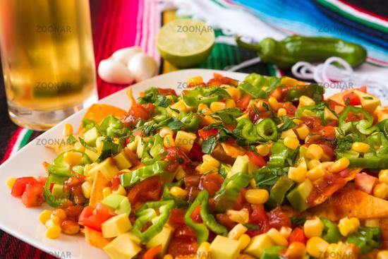 Close up of nachos salad