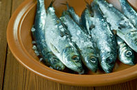 Surstromming Swedish  sour herring