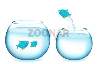 Jumping Blue Fish