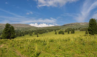 Beautiful summer landscape on top of Altai Krai mountains.