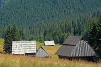 Old shepherd huts on the Chocholowska Glade, West Tatra, Poland