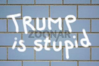 Trump is Stupid